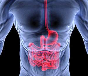 Protein that turns normal cells into cancer stem cells offers target to fight colon cancer